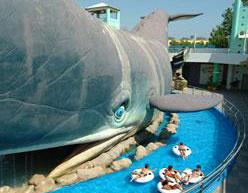 Dettaglio su grande balena simbolo del parco Atlantica Cesenatico
