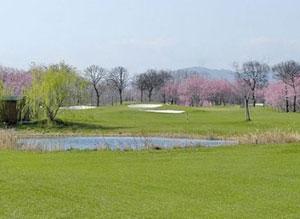 Dettaglio sulle buche tra gli albereti del Riviera Golf Club